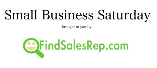 small business sat fsr